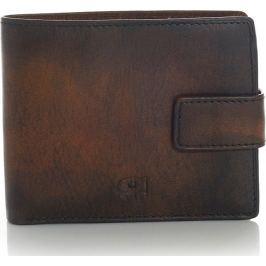 Pánská hnědá peněženka DAAG - p91a velikost: univerzální, odstíny barev: hnědá