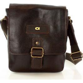 DAAG Pánská hnědá kožená taška JAZZY ORGANIC 4 (dg40c) Velikost: univerzální