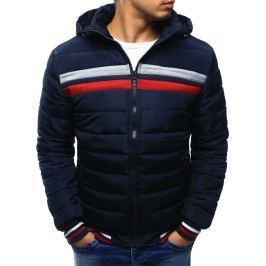 BASIC Pánská zimní bunda prošívaná (tx2030) velikost: M, odstíny barev: modrá