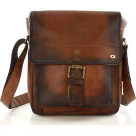 DAAG Pánská kožená hnědá taška přes rameno ALIVE 14 (dg48a) velikost: univerzální, odstíny barev: hnědá