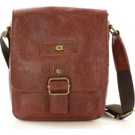 DAAG Pánská hnědá kožená taška JAZZY ORGANIC 4 (dg40b) velikost: univerzální, odstíny barev: hnědá