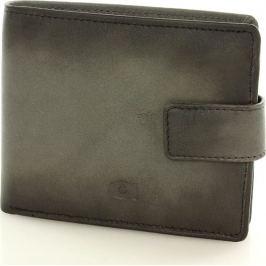 DAAG Pánská šedá kožená peněženka (P91b) velikost: univerzální, odstíny barev: šedá