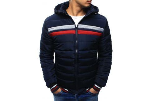 BASIC Pánská zimní bunda prošívaná (tx2030) velikost: M, odstíny barev: modrá Pánské bundy a kabáty